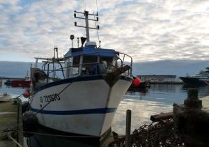 BREST: port de pêche - 10 janv-2012