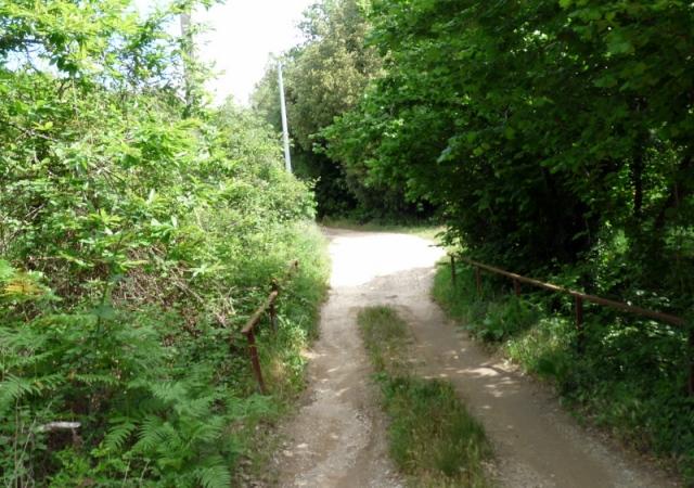 début de la montée - 2 km au nord de Collobrières