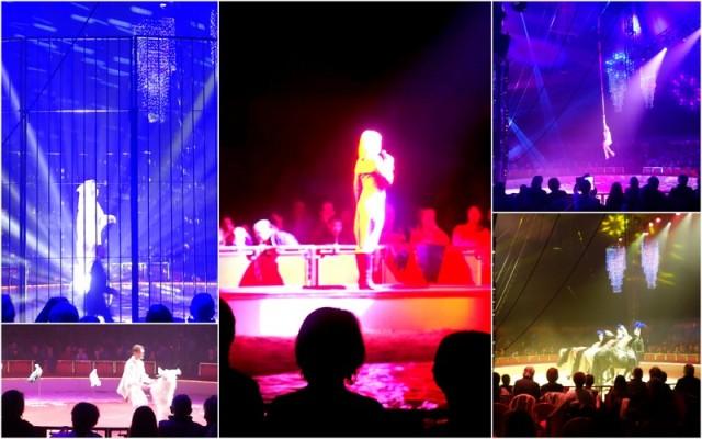 160303-cirque BOUGLIONE4