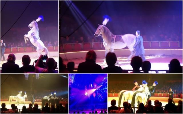 160303-cirque BOUGLIONE5