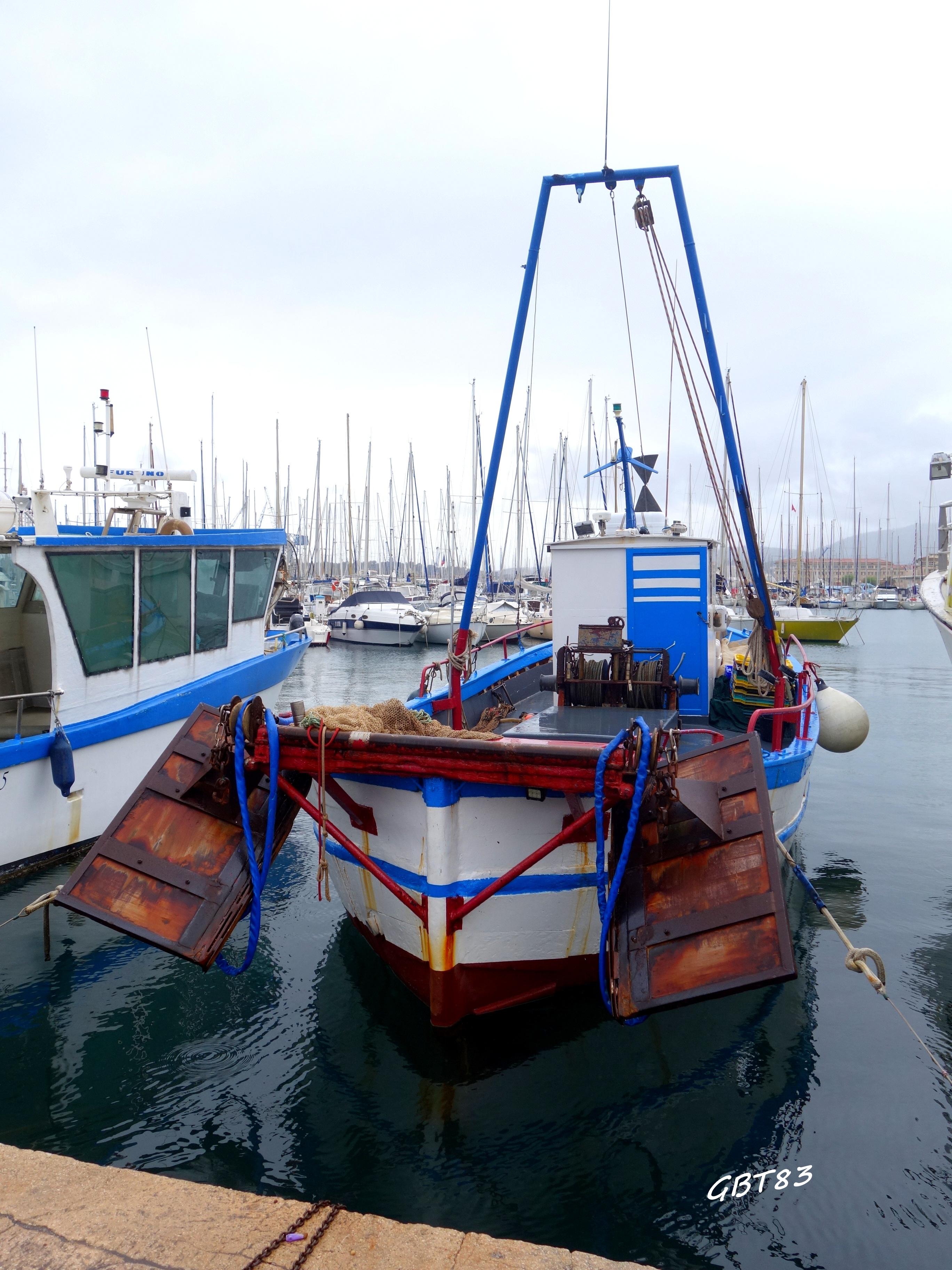 Toulon (8)